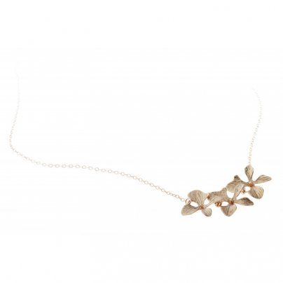 Cadena Orchid3 LA MORENITA